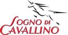 Logo Sogno di cavallino