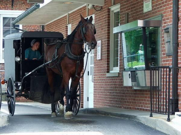 Amish McDrive